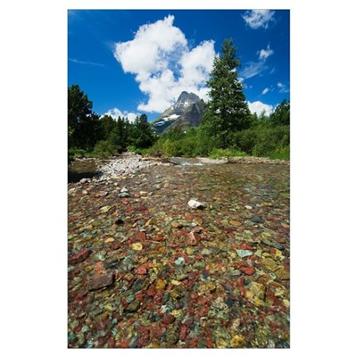 Colorful rocks in Red Rock Creek, distant mountain Poster