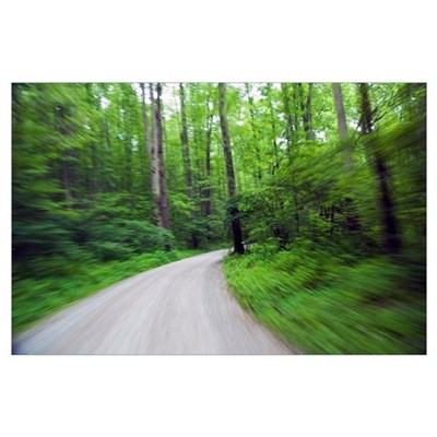 Road winding through spring forest, blurred motion Poster