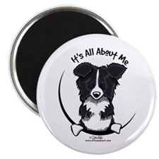 Border Collie IAAM Magnet