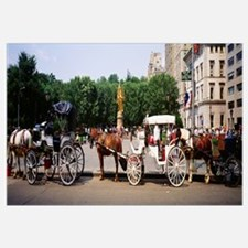 Horse carriages in a city, Grand Army Plaza, Centr