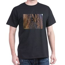 Horse Eye T-Shirt