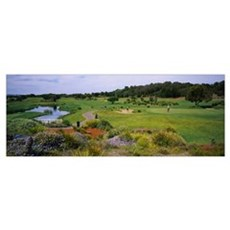 Person in a golf course, Eagle Ridge Golf Course,  Poster