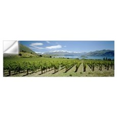 Vineyard in front of a lake, Rippon Vineyard, Lake Wall Decal