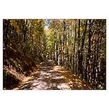 Road Garrett County MD