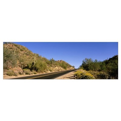 Bush Highway Tonto National Forest AZ Canvas Art