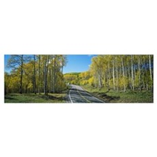 Recreational vehicle driving on road winding throu Poster
