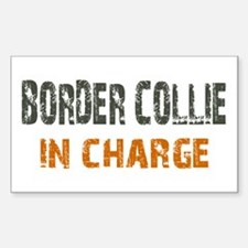 Border Collie IN CHARGE Decal