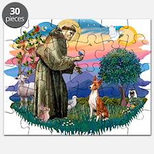 St Francis #2/ Basenji Puzzle