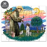 St.Francis #2/ GSHP Puzzle