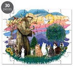 St Francis (ff)-7 Cats Puzzle