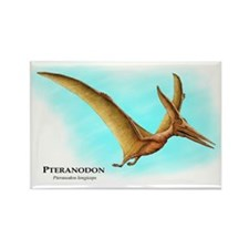 Pteranodon Rectangle Magnet