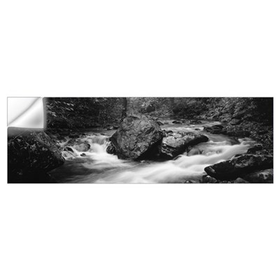 Bradley Fork in Bradley Fork Trail Great Smoky Mts Wall Decal