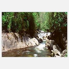 Chattooga River Nantahala National Forest Highland