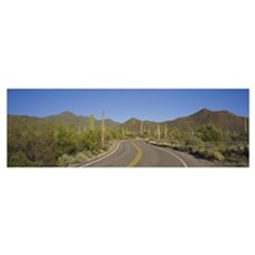 Winding road passing through a landscape, Saguaro  Poster
