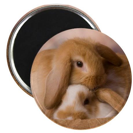 Cuddle Bunnies Magnet