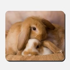 Cuddle Bunnies Mousepad