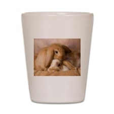 Cuddle Bunnies Shot Glass