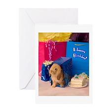 Birthday Bunny Greeting Card
