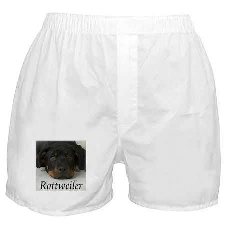 Rottie Pup Boxer Shorts