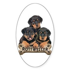 its a puppy thing! Oval Decal