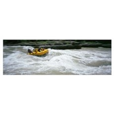 River Rafting Snake River Teton National Forest WY Poster