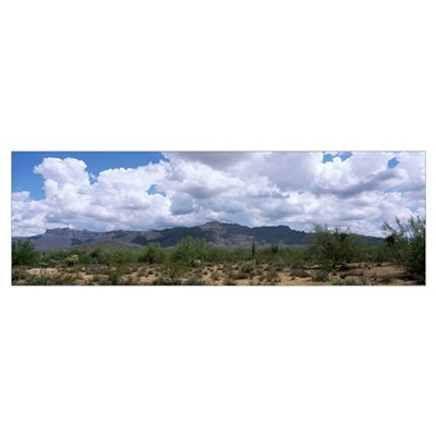 Superstition Mountains Sonoran Desert AZ Poster