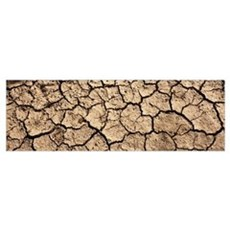 Cracked mud in a desert, San Benito County, Califo Canvas Art