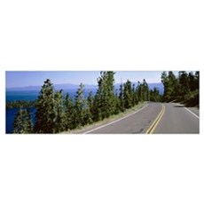 Pine trees on both sides of Highway 89, Lake Tahoe Framed Print
