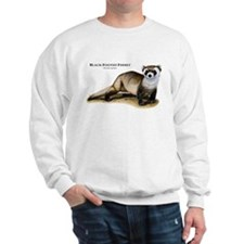 Black-Footed Ferret Jumper