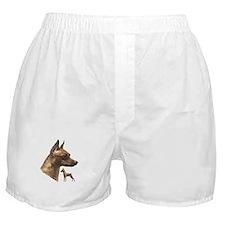 miniature pincher min pin Boxer Shorts