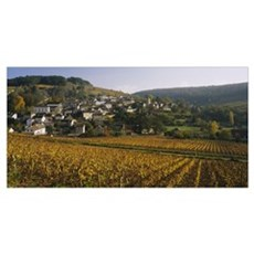 High angle view of a village, Bourgogne, France Poster