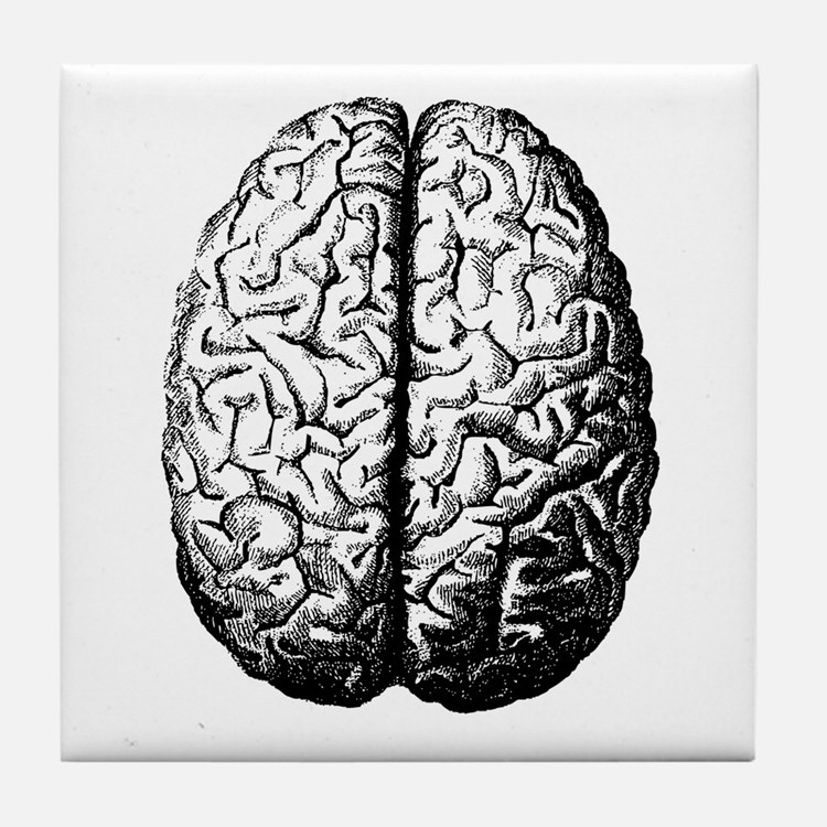 Brain II Tile Coaster