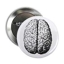 "Brain II 2.25"" Button (100 pack)"