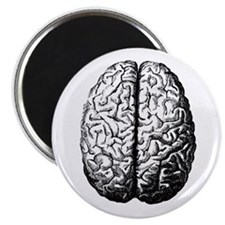 "Brain II 2.25"" Magnet (100 pack)"