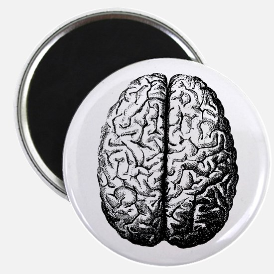 Brain II Magnet
