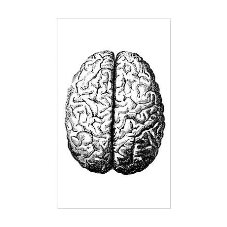 Brain II Rectangle Sticker