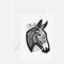 NOT Greeting Cards (Pk of 10)