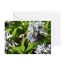 Bumblebee Greeting Cards (Pk of 10)