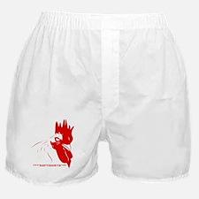 Fowlcocks Boxer Shorts