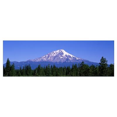 Mt Shasta McCloud CA Poster