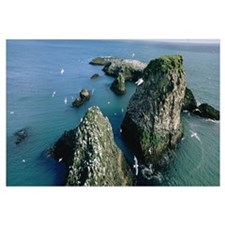 Iceland, Snaefellsnes Peninsula, Flock of birds ov