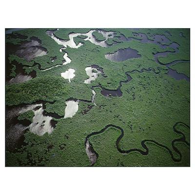 Florida, Everglades National Park Poster