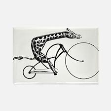 Unique Mountain biking Rectangle Magnet (10 pack)