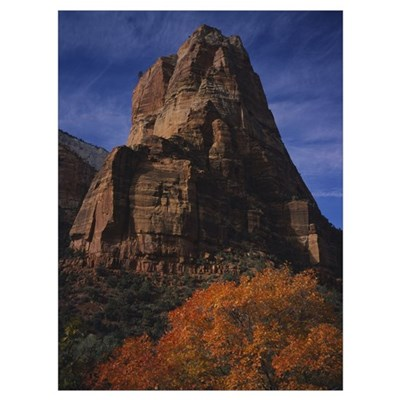 Low angle view of a cliff, Zion National Park, Uta Poster