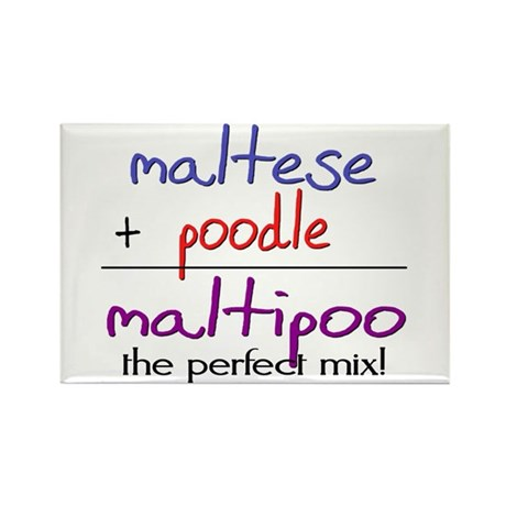 Maltipoo PERFECT MIX Rectangle Magnet
