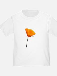 California Poppy T