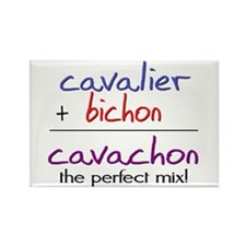 Cavachon PERFECT MIX Rectangle Magnet