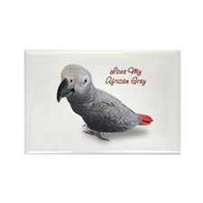 African Grey Parrot Gifts Rectangle Magnet