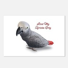 African Grey Parrot Gifts Postcards (Package of 8)