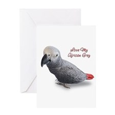 African Grey Parrot Gifts Greeting Card